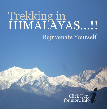 Trek in Himalayas